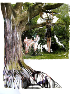 'Hanging in tree', collage, 2008, 60 x 50 cm