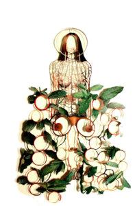 'Hidden bush maria', collage, 2008, 45 x 58 cm