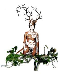 'Deerbushman', uit serie bushmen, collage, 2008, 40 x 50 cm